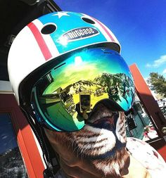 https://www.instagram.com/p/BeE1Xd_F-lO/ I have a soft spot in my heart for mountains ...... do you ? Get your FREE mask - Click my bio link  #facemask #getawesome #lion #snow #snowboard #snowboarding #aspen #aspenco #coloradoliving #coloradolove #colorfulcolorado #xmas #winter #amazing #views #mountain #aspencolorado #instalike #happy #me #picoftheday #sky #nature #winteriscoming #pow #photooftheday #aspensnowmass #coloradogram #love #instacool Double tap and tag 3 friends Follow for more…