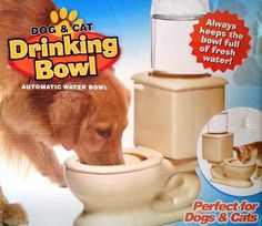 Does your dog prefer to drink from the toilet??? This might help :-) Pet Toilet Bowl Water Fountain #dogwaterfountain