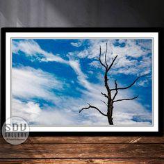 Downloadbares Bild, Digital Foto, druckbare Wandkunst, Baum, Wald, Himmel, Wolke, Natur, Toter Baum, Herbst, Blattlos, Wien, Österreich