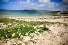 Mannin Bay in Connemara, Ireland I @SatuVW I Destination Unknown