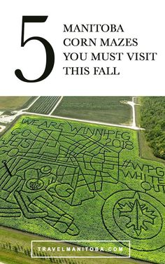5 Manitoba corn mazes to get lost in this fall Stuff To Do, Things To Do, Labyrinths, Staycation, Travel Essentials, Pumpkin Spice, Wander, Travelling