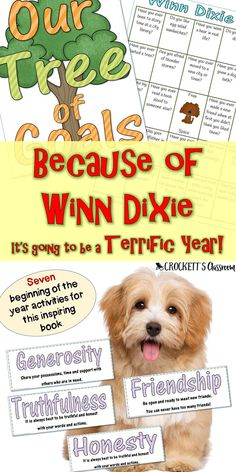Begin your school with a terrific book. Because of Winn Dixie is an amazing book to share with your kids. It's also a wonderful way to teach the qualities of good students, getting to know new friends and setting goals for the new year. Start your year Back To School Activities, Writing Activities, Good Student, Beginning Of The School Year, Book Projects, Setting Goals, Read Aloud, Reading Comprehension, New Friends