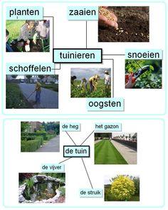 Woordkaarten : tuinieren / tuin