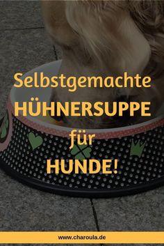 Homemade chicken soup for dogs - Hundefutter DYS - # Homemade Chicken Soup, Homemade Dog Food, Costume Chien, Food Dog, Chicken Treats, Dog Hacks, Dog Agility, Dog Costumes, Dog Behavior