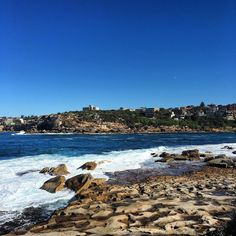 (Loc) Posted on May 29 2016 at 03:25PM by ashagirlx: #bonditocoogeecoastalwalk #sydney #beach #australia