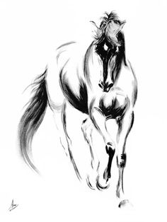 charcoal drawing - horse If I ever got a horse tattoo this would be it. Simple and beautiful. Horse Drawings, Animal Drawings, Art Drawings, Sketches Of Horses, Charcoal Art, Charcoal Drawings, Drawn Art, Equine Art, Horse Art