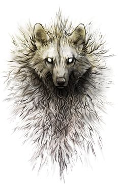 Wolf Appearance. Not my work.