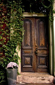 Curb appeal, I want a cute vine growing around my front door.