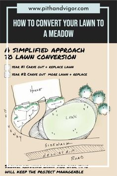 There are many better garden alternatives to the American lawn. how to transform a lawn to a meadow in 5 easy steps. meadows are attractive and interesting gardens. They often thrive in the worst kinds of soil and are highly characteristic of their location. Meadow's also provide much needed habitat if we are to reverse the decline of a huge variety of species. Sod Cutter, Garden Makeover, Weed Seeds, Green Books, Organic Seeds, Wildflower Seeds, How To Grow Taller, Amazing Gardens