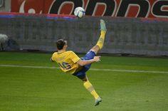 Videos de todo un poco: El mejor gol del mundo