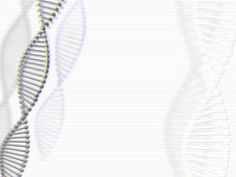 Deoxyribonucleic acid (DNA) is a nucleic acid that contains the genetic instructions used in the development and functioning of all known living organisms and some viruses. Powerpoint Background Templates, Powerpoint Themes, Powerpoints For Teachers, Cover Page Template Word, Nucleic Acid, Medical Prescription, Wallpaper Pictures, Pretty Birds, School Hacks