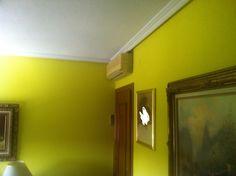Plastico Optimat Color Verde limon