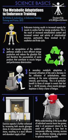 #Basics | The Metabolic Adaptations to Endurance Training | By @YLMSportScience