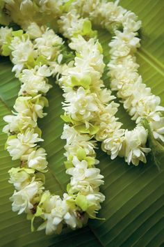 Pikake Lei's one of the sweetest smells on earth,
