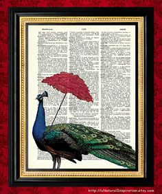 Newspaper Peacock Screen print