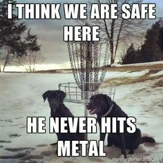 Disc Golf/ What my dog, Connor, would say until I hit him! ;-)