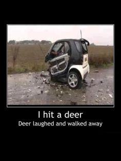 Stupid 'Smart' cars!