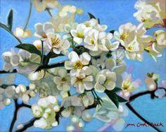Cherry Blossoms, Jan Cook Mack