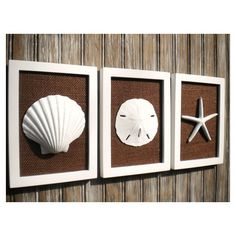 Cottage Chic Set of Beach Wall Art, Sea Shells Home Decor, Beach... ($55) ❤ liked on Polyvore featuring home, home decor and wall art