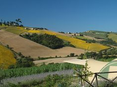 Kleine Boerencamping in Le Marche, Italie - Mini Camping