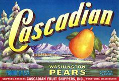 Cascadian Pears label