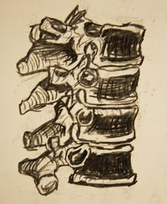 Vertebrae - Lateral Aspect by ~abstringo on deviantART
