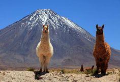 Viaje a Jujuy, Argentina.