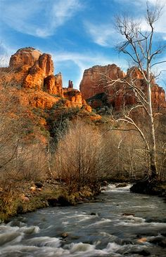 Oak Creek Canyon, Sedona; Arizona; photo by Elizabeth Carmel