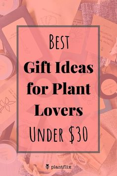 For you gardening enthusiasts or beginner hobbyists interested in jumping into indoor gardening specifically growing plants from seed as a hobby, this subscription box provides you with your seed fix every month and also guides you starting off with easier projects, ultimately growing into intermediate and then advanced levels of gardening so you can master various germination techniques and develop that green thumb you've always wanted! Each subscription box comes with an extensive guide Indoor Vegetable Gardening, Planting Vegetables, Container Gardening, Flea Market Gardening, Florida Gardening, Gardening Supplies, Gardening Tips, House Plant Delivery, House Plant Care