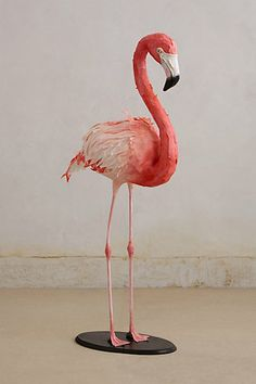 @Karissa Anderson-Self ...here's some insanely affordable paper flamingos for you house. They're only like...$500-$4000. Totally doable.