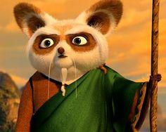 Kung Fu Panda, Shrek, Dreamworks, Ninja, Master Shifu, Dr Strange, Disney And More, Universal Studios, Otters