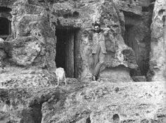 Sir William Matthew Flinders Petrie, Gíza, 1880