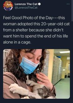 Wholesome Moments That Show People Want to Be Nice