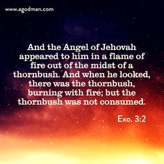 Exo. 3:2 And the Angel of Jehovah appeared to him in a flame of fire out of the midst of a thornbush. And when he looked, there was the thornbush, burning with fire; but the thornbush was not consumed. Bible Verse quoted at www.agodman.com