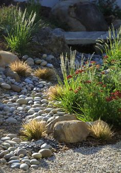 """Dry Creek Beds"" Design Ideas, Pictures, Remodel and Decor"