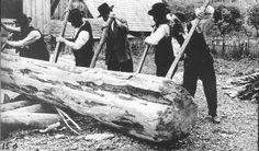 Warsaw, Poland, A group of Hassidic Jews who were forced laborers trying to roll a large tree trunk.