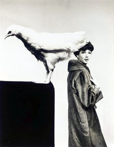 Simone D'Aillencourt wearing a coat by Balenciaga with a chicken, 1959.