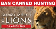 Global March for Lions 15th March 2014