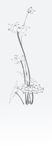 >>> 【蓮因寺105年暑假女眾齋戒學會】 <<<   蓮因寺資訊網