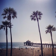 Manhattan Beach, California. My favorite summer vacation place