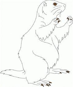 c f8c42fec2cfa24aec9a e prairie dogs dog cartoons