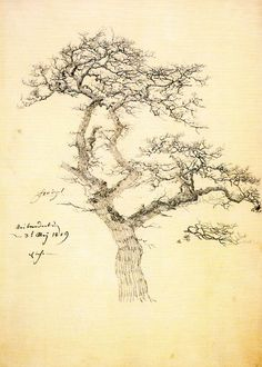 Caspar David Friedrich - 1809 Bare Oak Tree, pencil,   36 x 25.9 cm