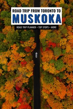 Looking for incredible road trips in Ontario? Here's your road trip planner for an epic Toronto to Muskoka road trip for any time of year, including all the best stops along the way, top places in Muskoka to visit, hikes, where to stay and eat, and so much more! Start planning your road trip to Muskoka today! I Ontario travel I Ontario road trips I Toronto road trips I things to do in Muskoka I Muskoka travel I places to go in Ontario I #Ontario #Toronto #Muskoka #roadtrips Vancouver Travel, Toronto Travel, World Travel Guide, Travel Guides, Travel Tips, Road Trip Hacks, Road Trips, Ontario Getaways, Cool Places To Visit