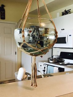 Macrame hanging fishbowl idea- get a 100lb toggle bolt, large glass bowl, & macrame hanger for ~$15 on Amazon. May eventually drop and shatter everywhere but I have faith!! It's holding!