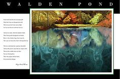 """""""Tribute to Henry David Thoreau, Walden Pond with Poem"""" Photographic Prints by troutusa   Redbubble"""