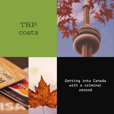 Criminal Record, Travel Tips, Canada, Learning, Blog, Travel Advice, Studying, Blogging, Teaching