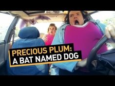 Precious Plum: A Bat Named Dog The best College Humor video! Sorry for the swearing but its the best one!
