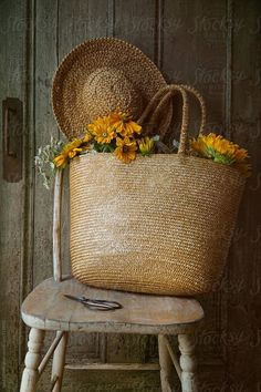 Sunflowers in straw purse on chair by Sandra Cunningham - Sunflower, Fall - Stocksy United Flower Background Wallpaper, Flower Backgrounds, Beautiful Images, Beautiful Flowers, Stock Imagery, Still Life, Wicker, Vintage, Rustic
