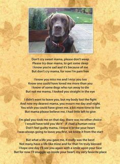 Dog bereavement poem, dedicated to my beautiful pets who have crossed the rainbow bridge I Love Dogs, Puppy Love, Animals And Pets, Cute Animals, Dog Poems, Pet Loss Poems, Pet Loss Quotes, Pet Loss Grief, Loss Of Dog