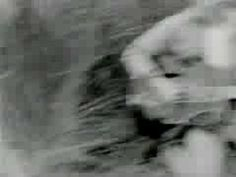 That Petrol Emotion - Cellophane (Promo) - YouTube